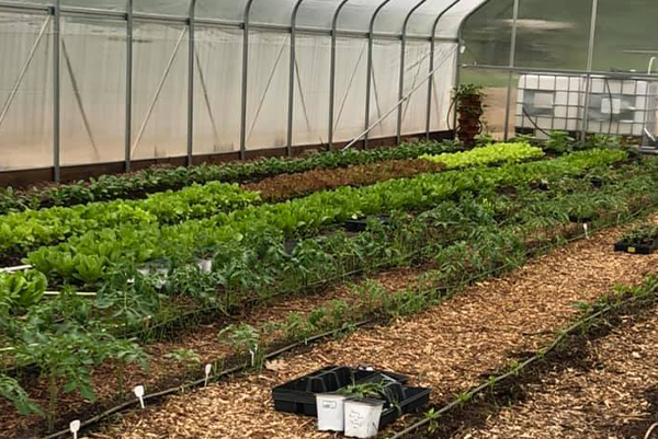 Willow Bourn Farms Greenhouse